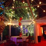 Clear roof marquee with festoon lighting