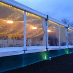 External View - Pea Lamp canopy with outside uplighters