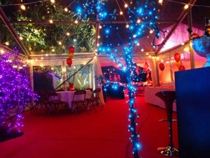 Party marquee festoon lighting